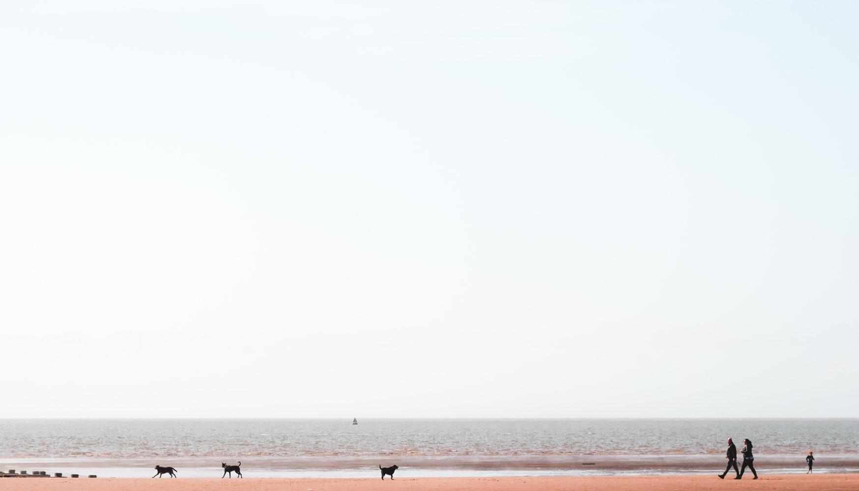vivienda cerca del mar pineda