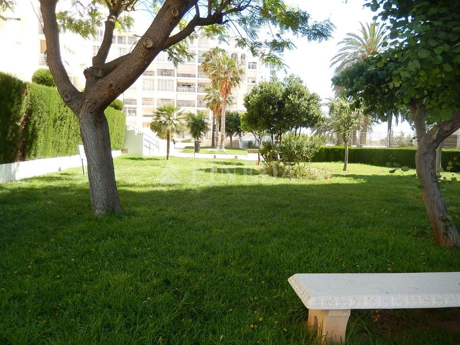 Imagen de Casa en El Puig número 34